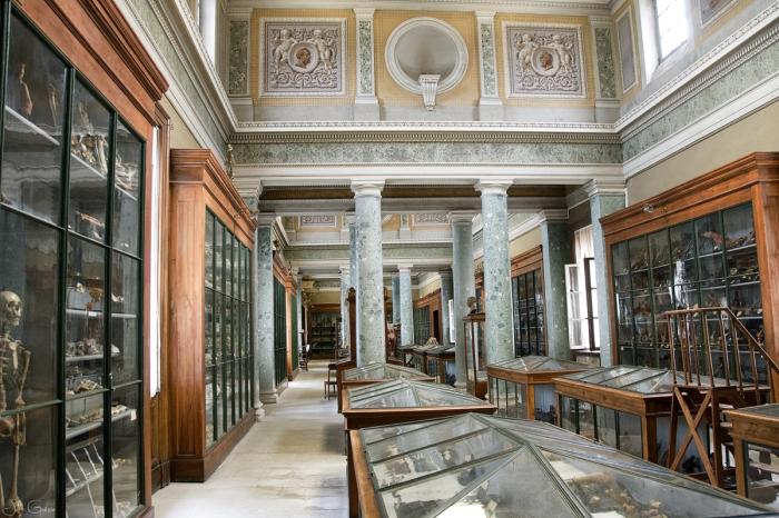 musée-anatomie-Montpellier