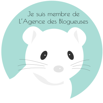 l'Agence-des-blogueuses-insaniam
