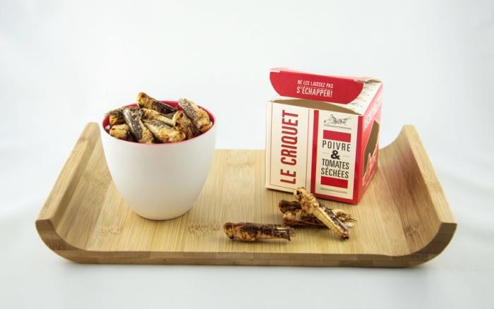 Jimini's-criquets-insectes-manger